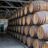 Picture - ShootOutside Film/Photo Location Scout Service Spain Andalusia - Barrels Bodega